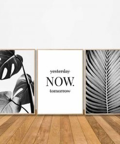 Palm Frond Now Art